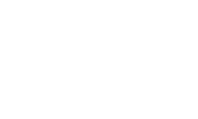 Die Graue Edition